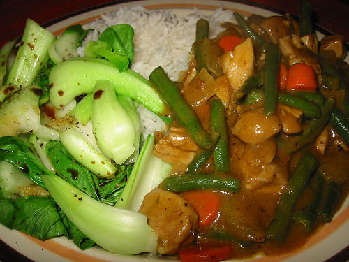 Plate shot of rice, blanched bok choy and chicken curry