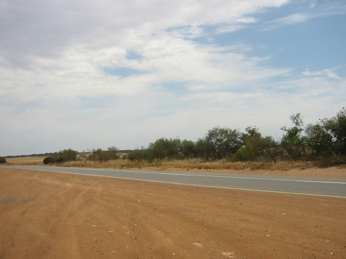 Rest stop approx. 20km south of Dongara