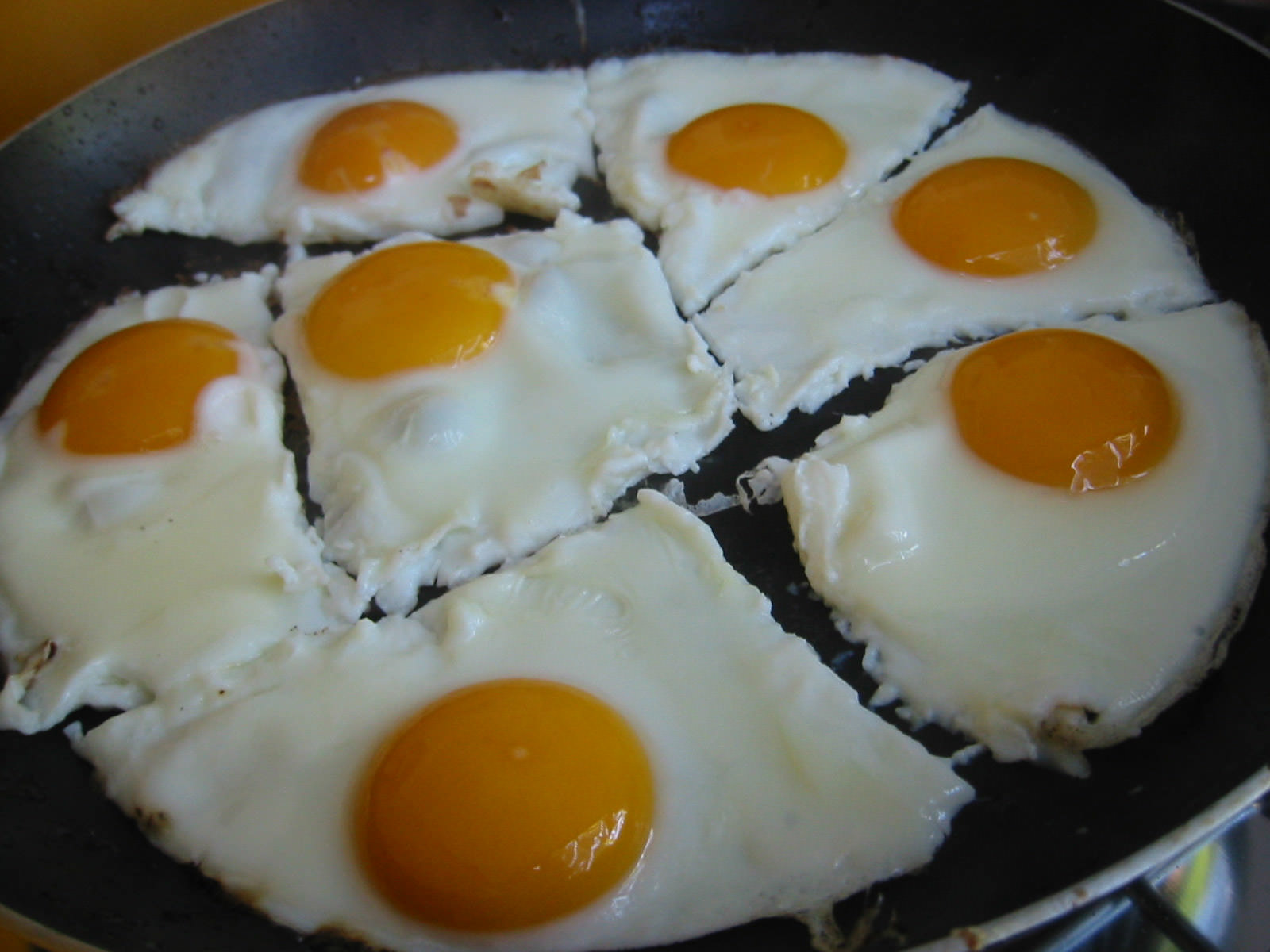 Eggs for everybody!