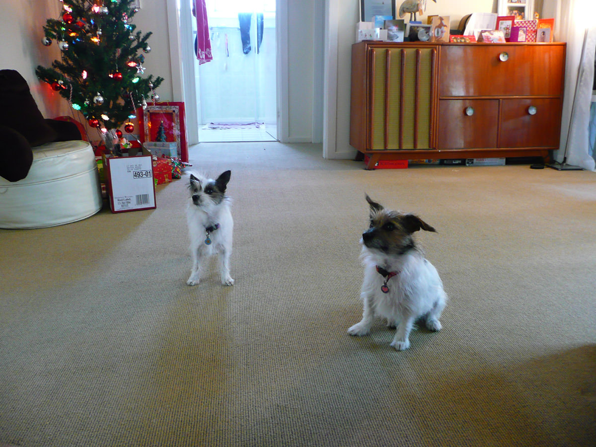 Milly and Molly