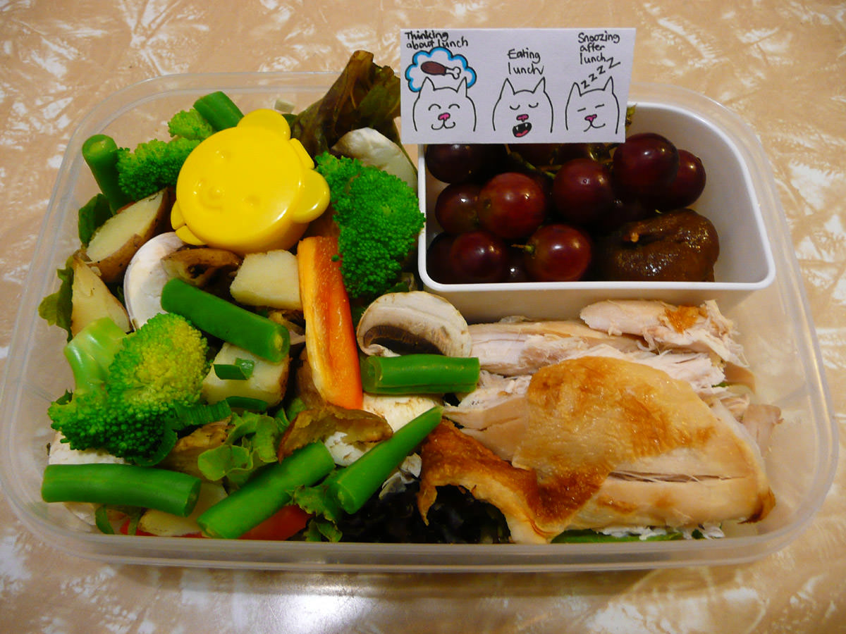 Jac's Wednesday bento - cold BBQ chicken with vegetables and fruit