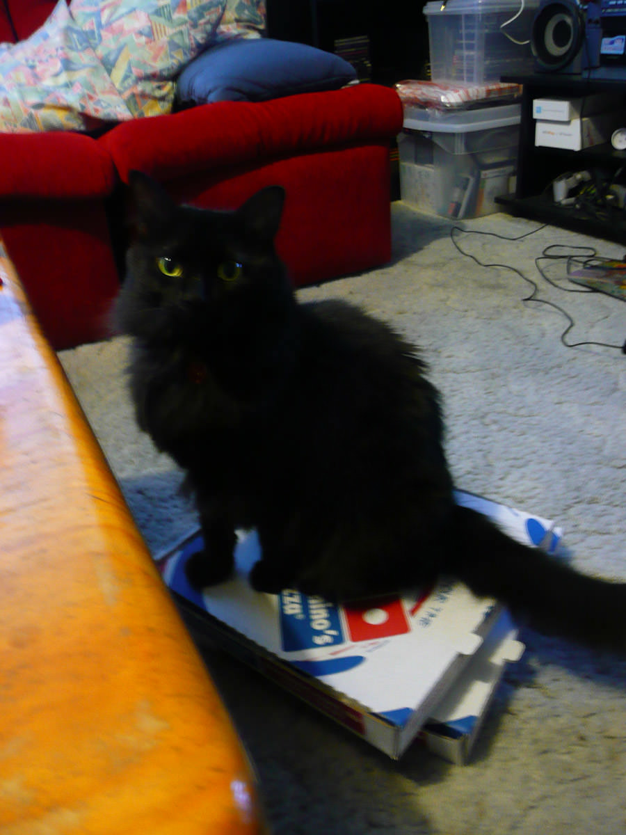 Pixel on pizza boxes