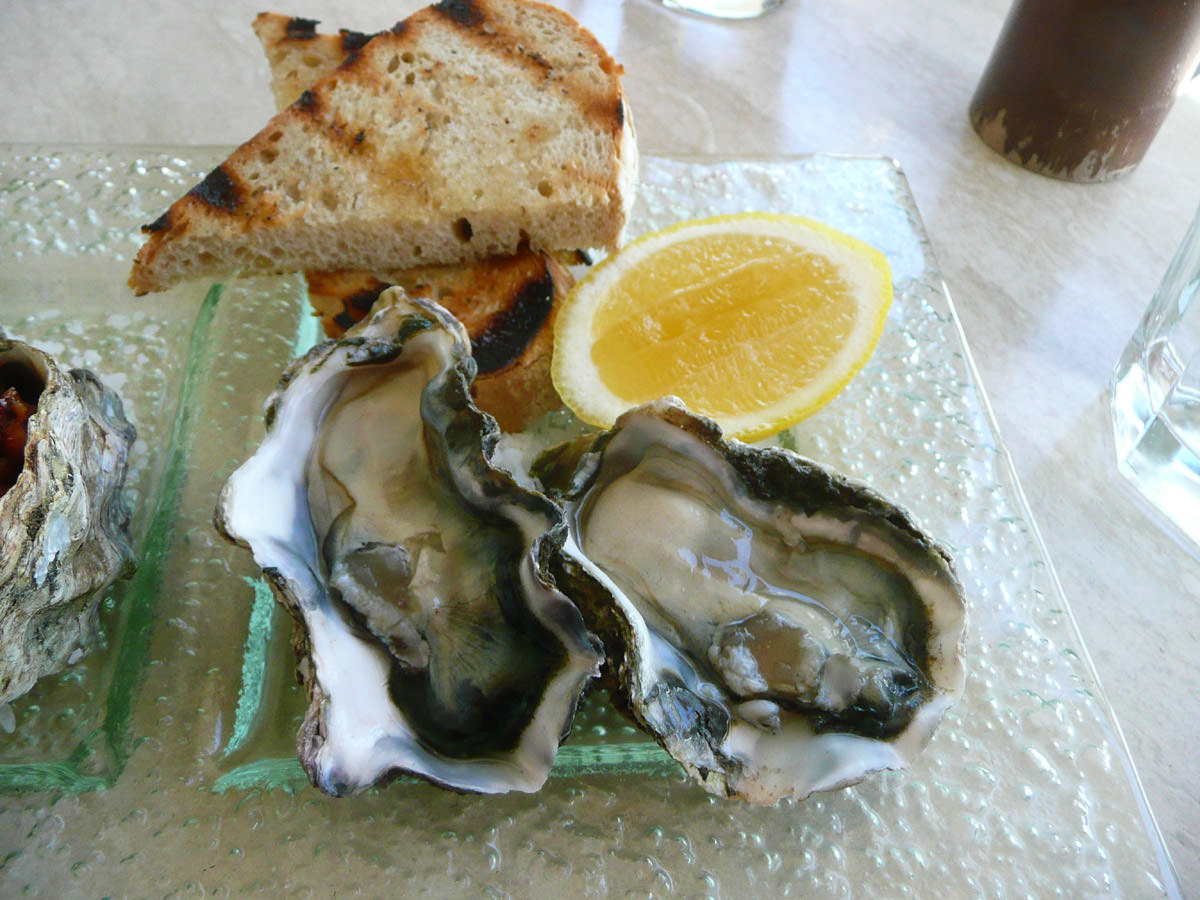 Oysters natural