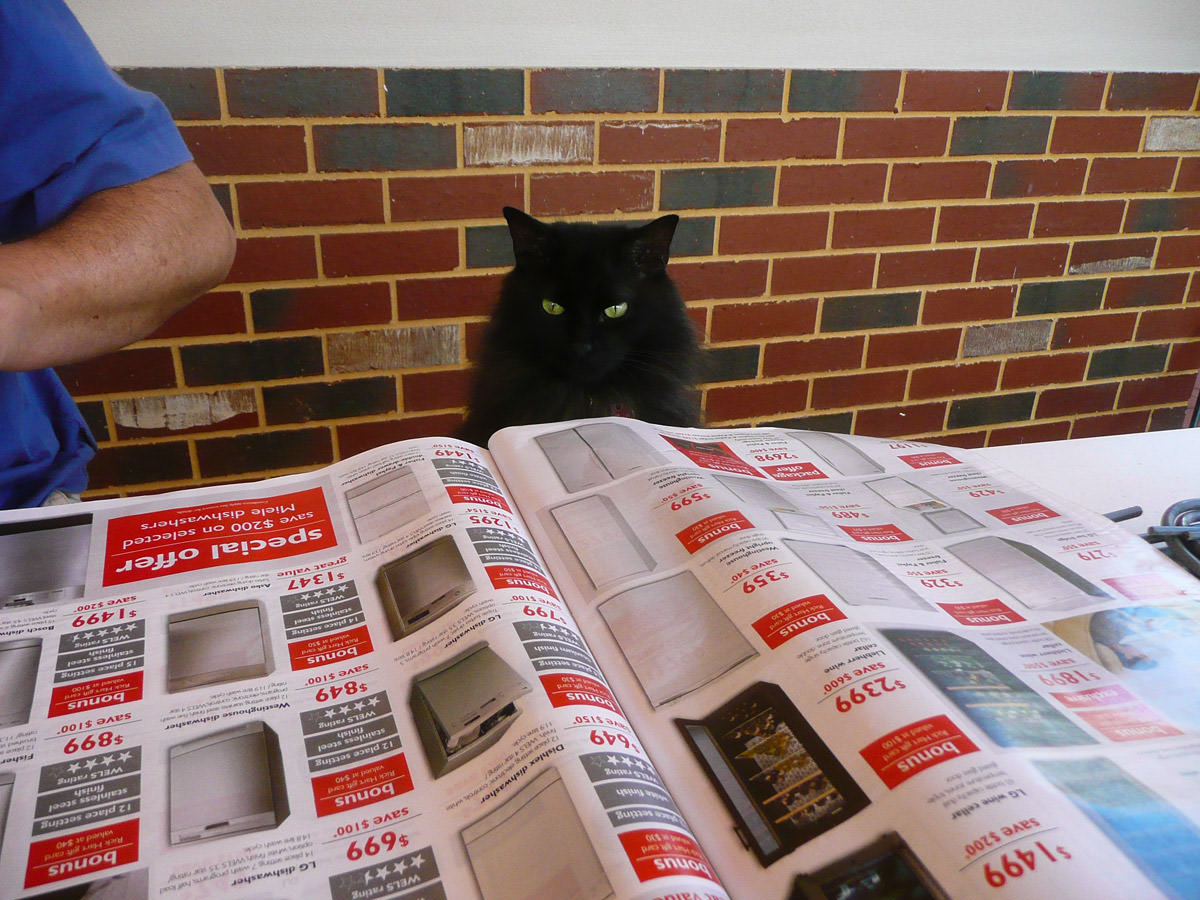 Pixel reads a catalogue