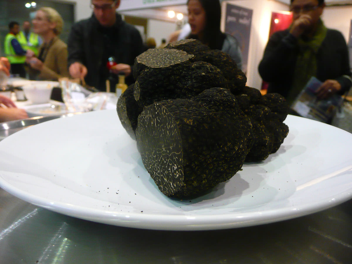 A big truffle