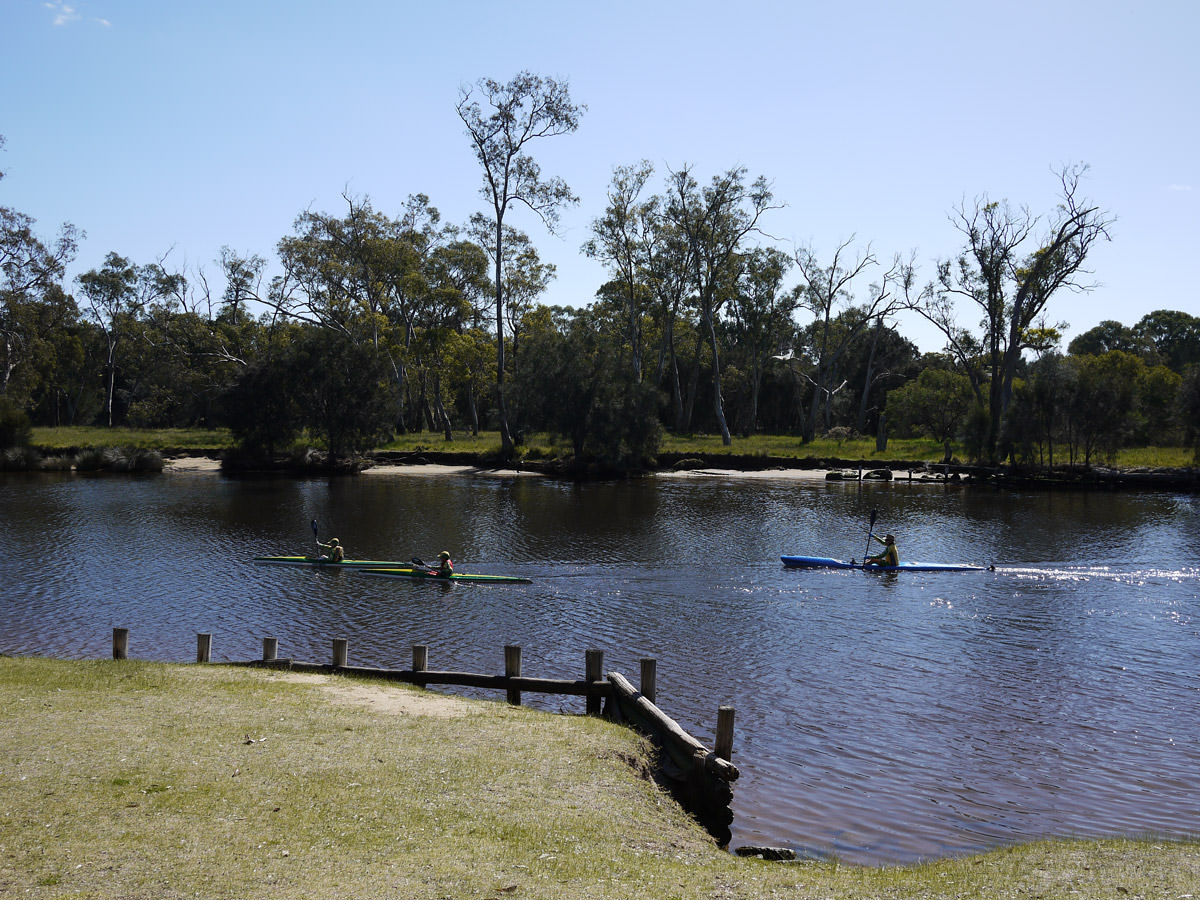 Kayakers on the water