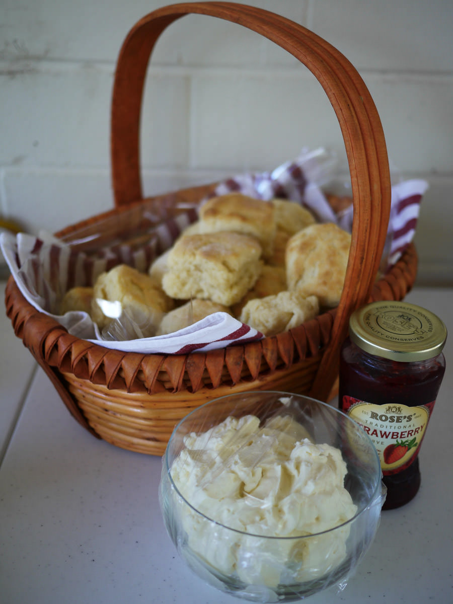 Scones (made by Mum), whipped cream and jam