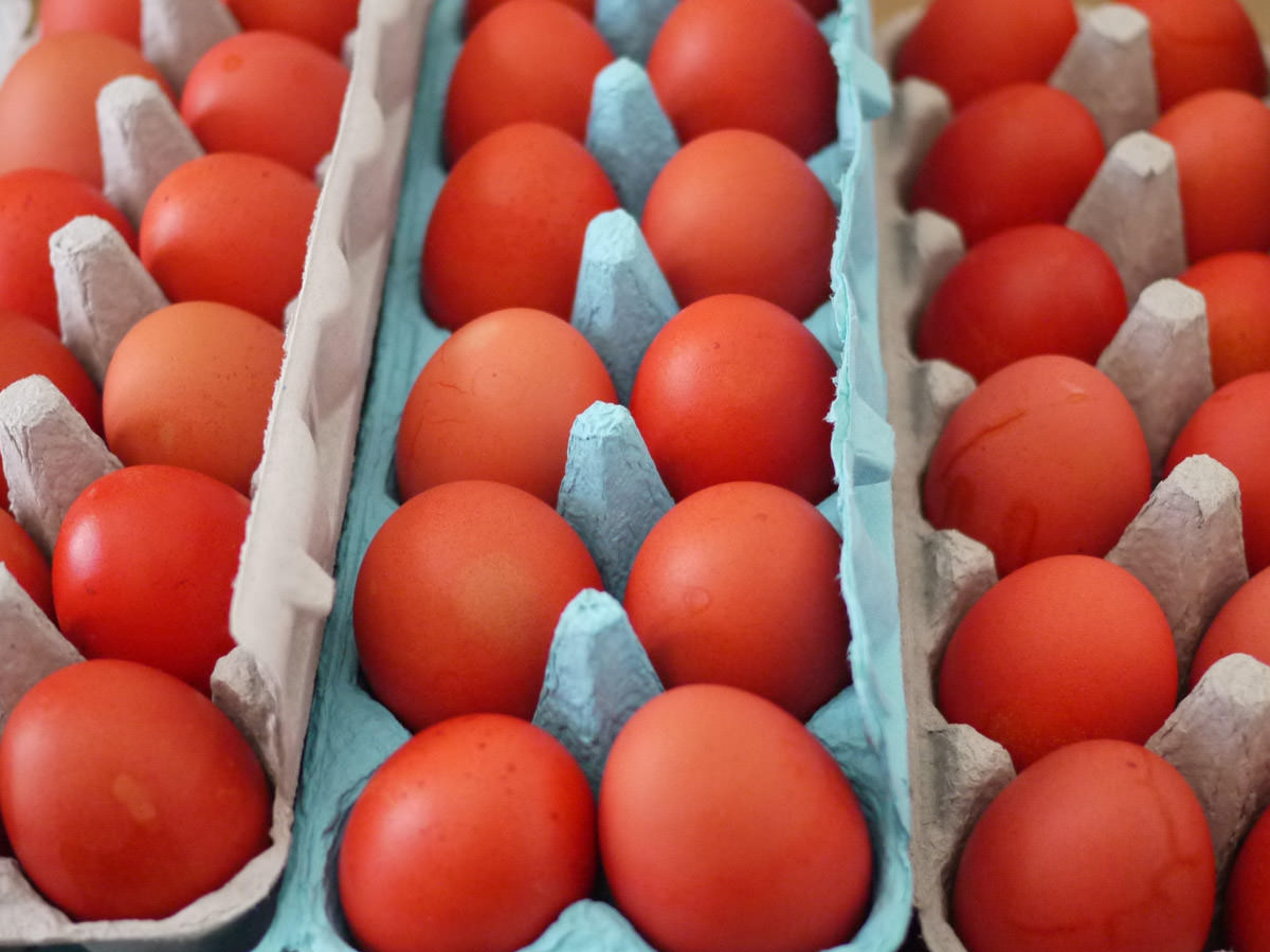 Three dozen red eggs in their cartons