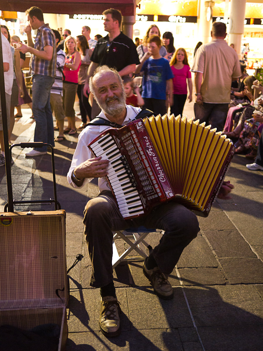 Another accordion player