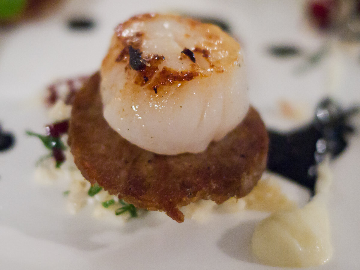 Seared scallops, confit pork, cauliflower, mint & squid ink - close-up