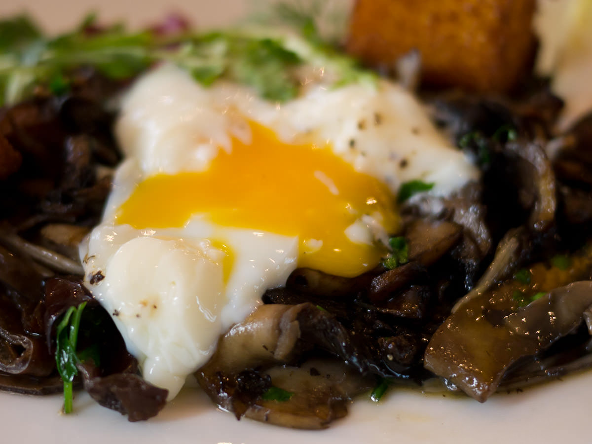 My second gooey slow cooked egg oozing over wild mushrooms