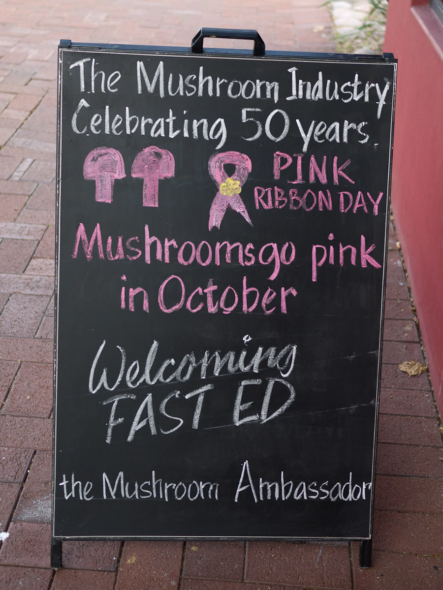 The mushroom industry celebrating 50 years - Mushrooms go pink in October
