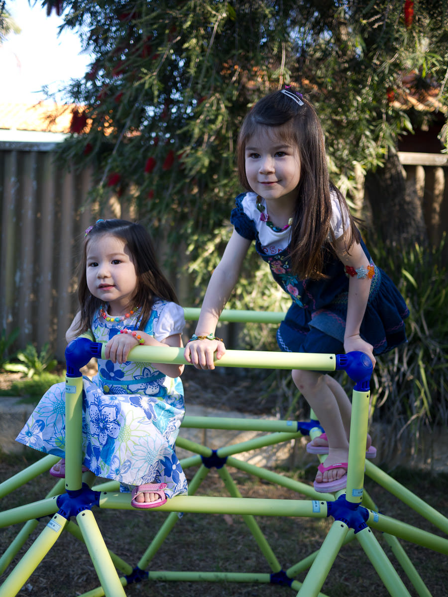 Zoe and Ruby on their climbing frame