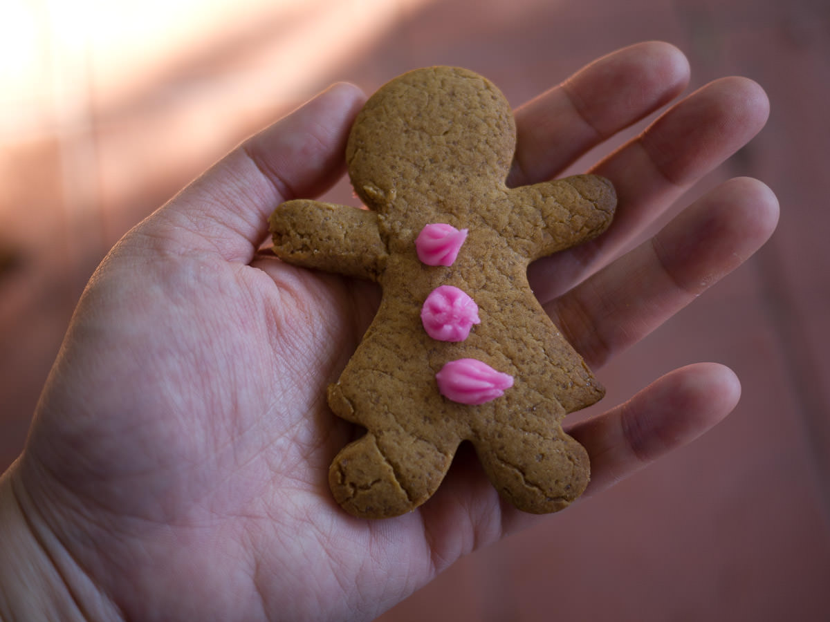 Gingerbread woman, just before the first bite