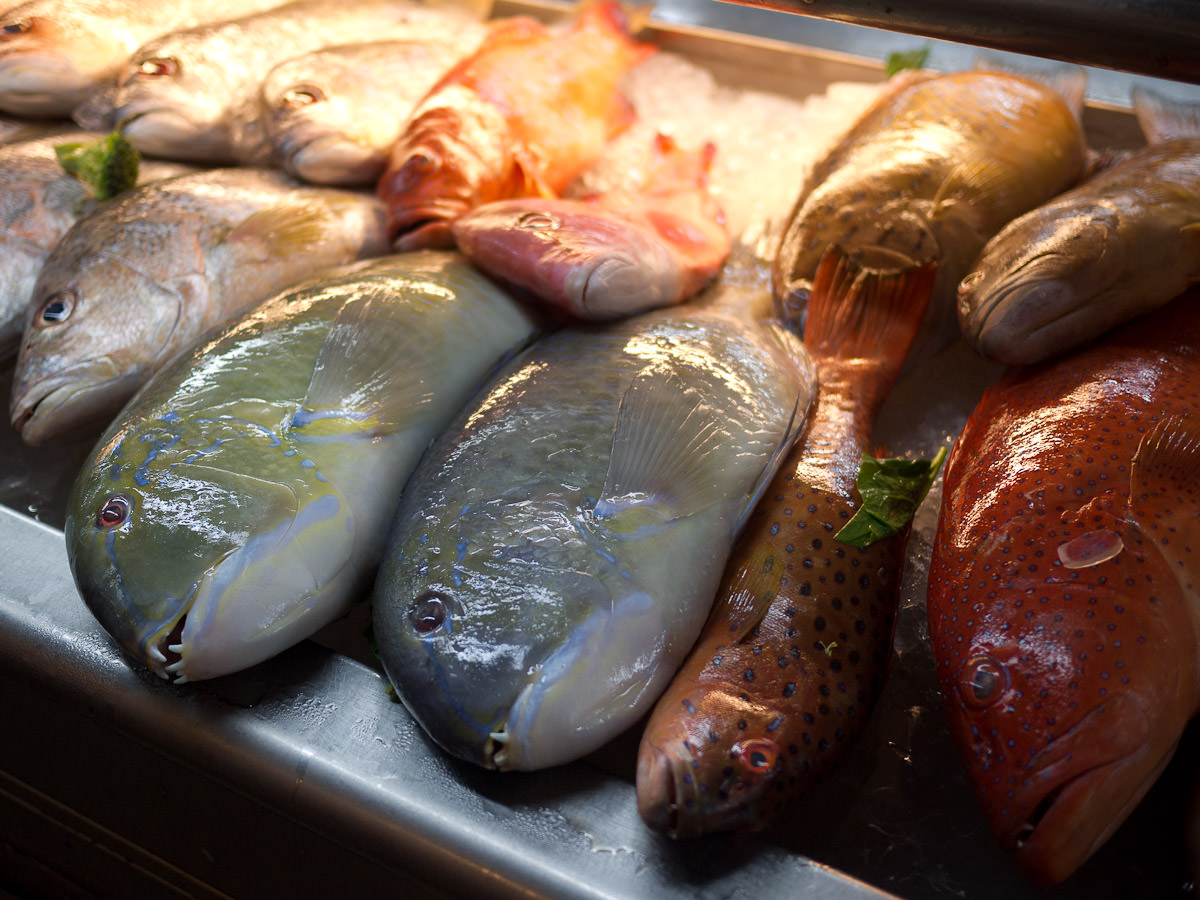 Fresh fish at Top Spot food court - choose your dinner!