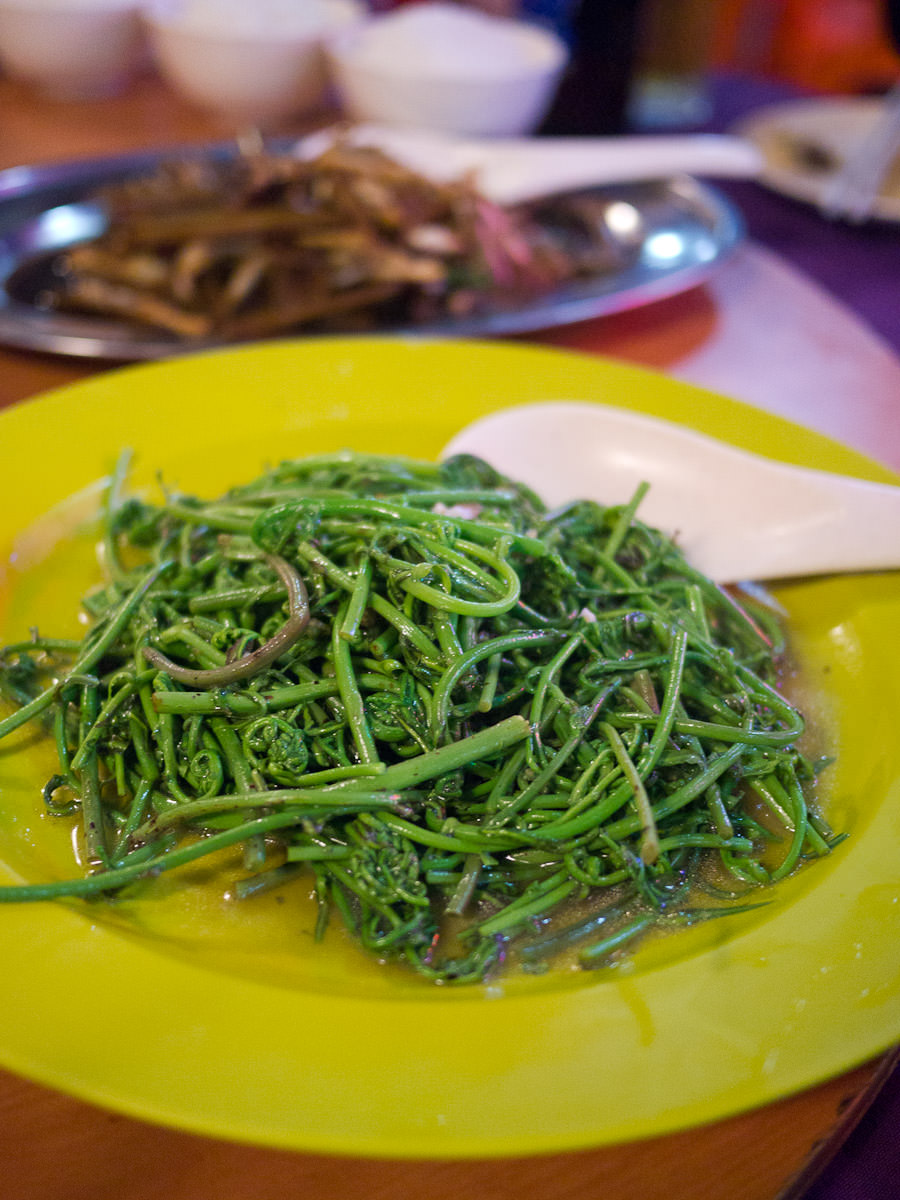 Midin (jungle fern) with oyster sauce