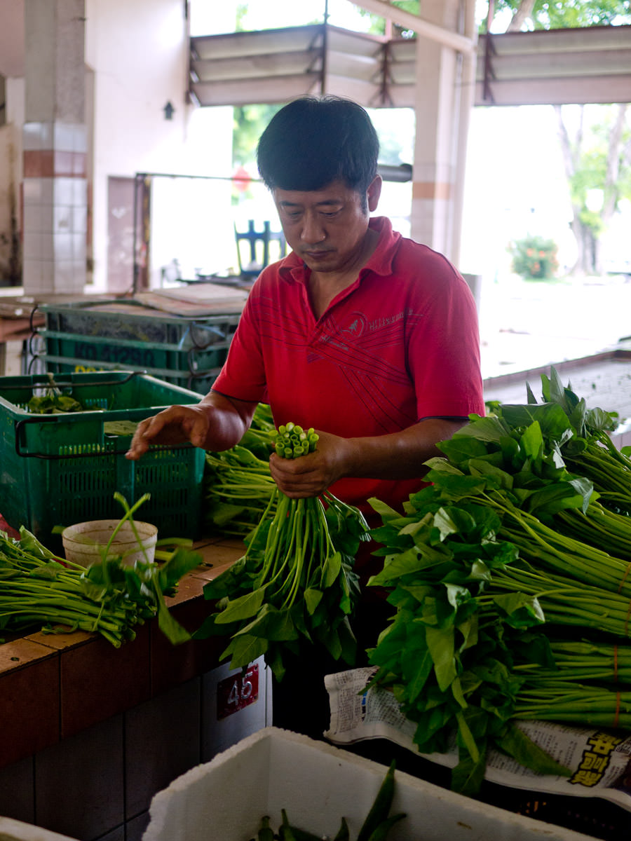 Sorting out bunches of kangkong, also known as water spinach, morning glory and water convolvulus