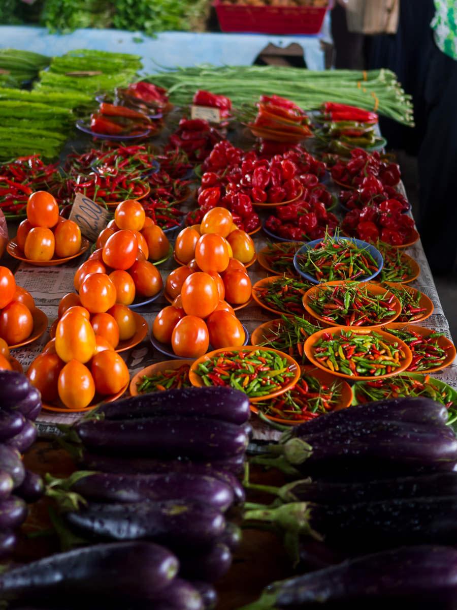 Beautiful shiny tomatoes