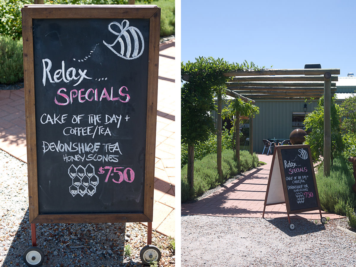 House of Honey specials board - cake of the day + coffee or tea or Devonshire tea honey scones (AU$7.50)
