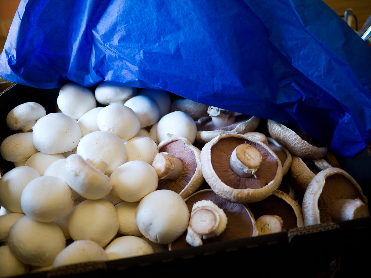 A box of mushrooms for the chefs
