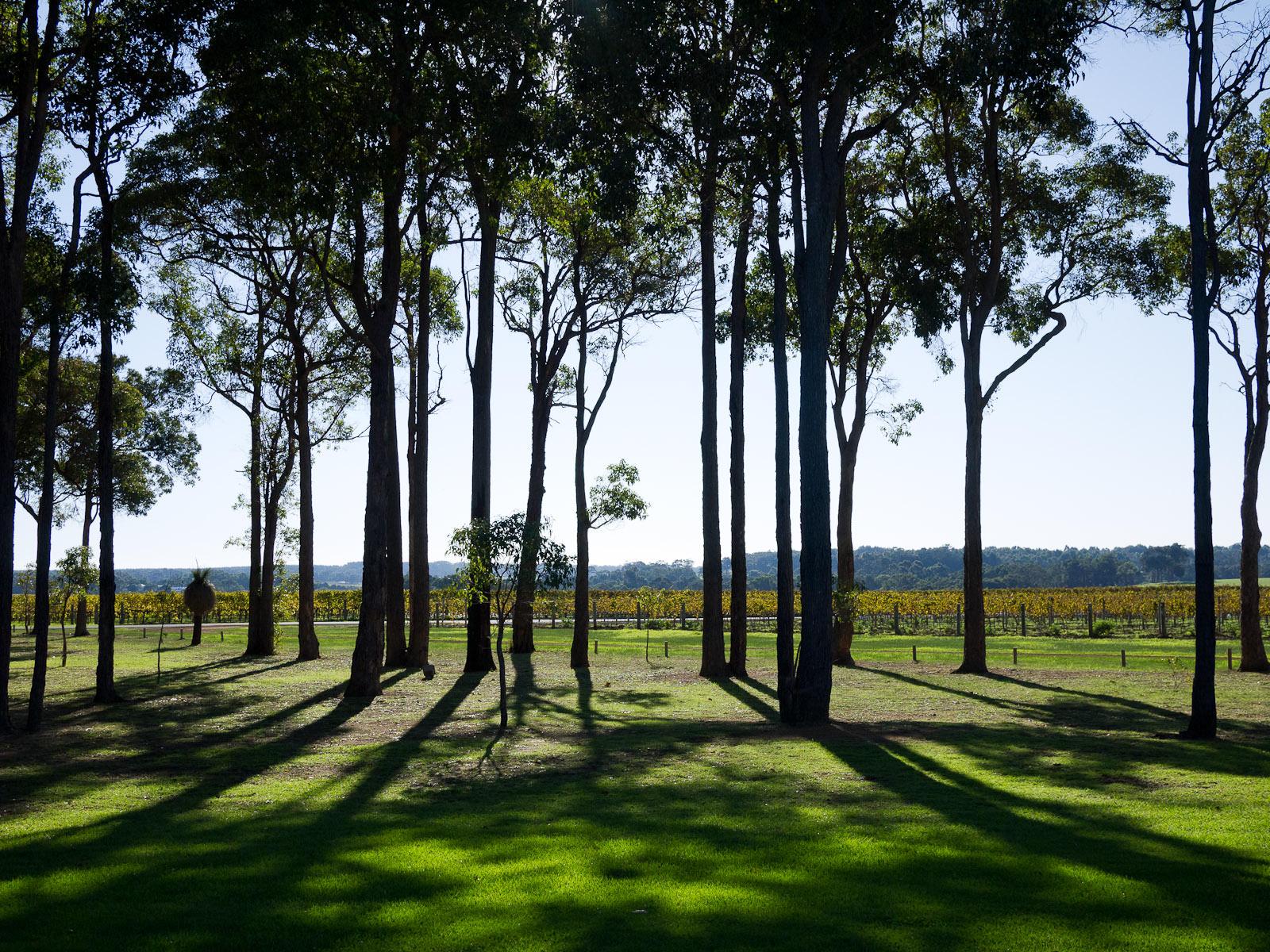 Howard Park Wines, Margaret River