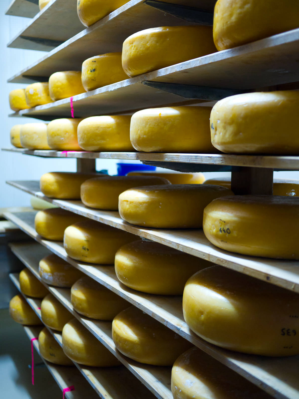 In the Cambray cheese room