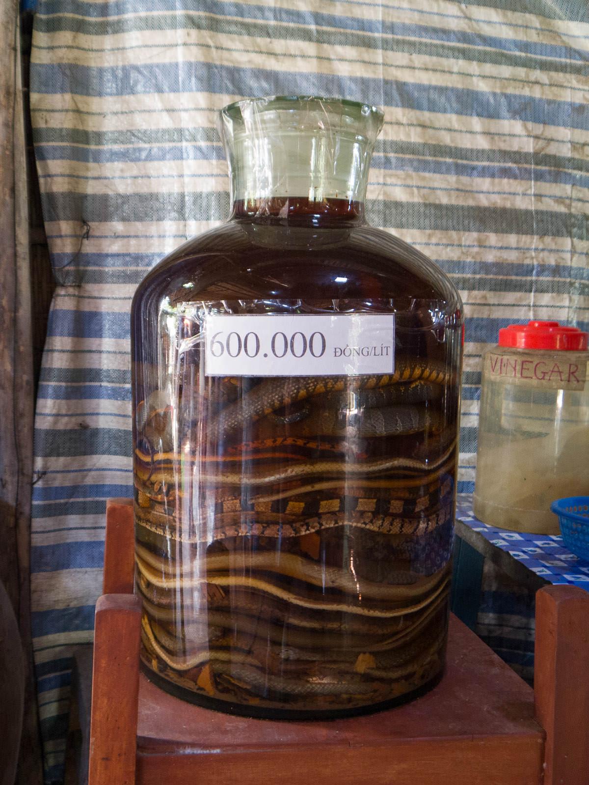 Python wine