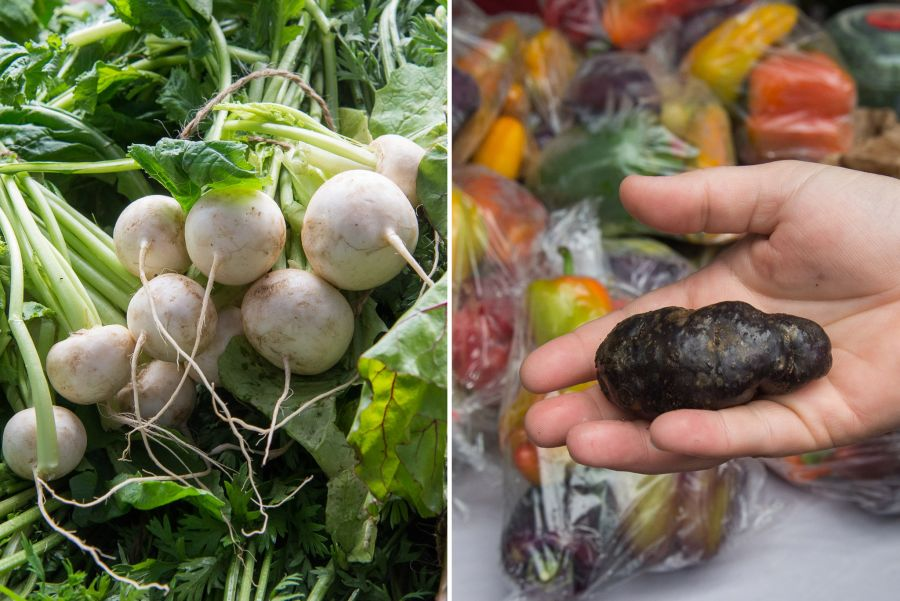 L-R: White radishes and black potatoes