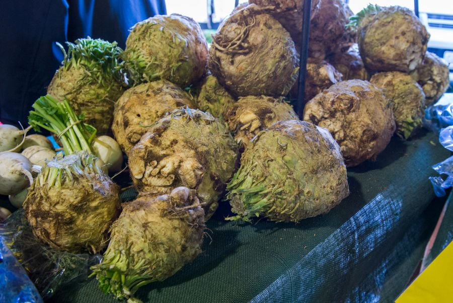 Celeriac, The Chef's Garden