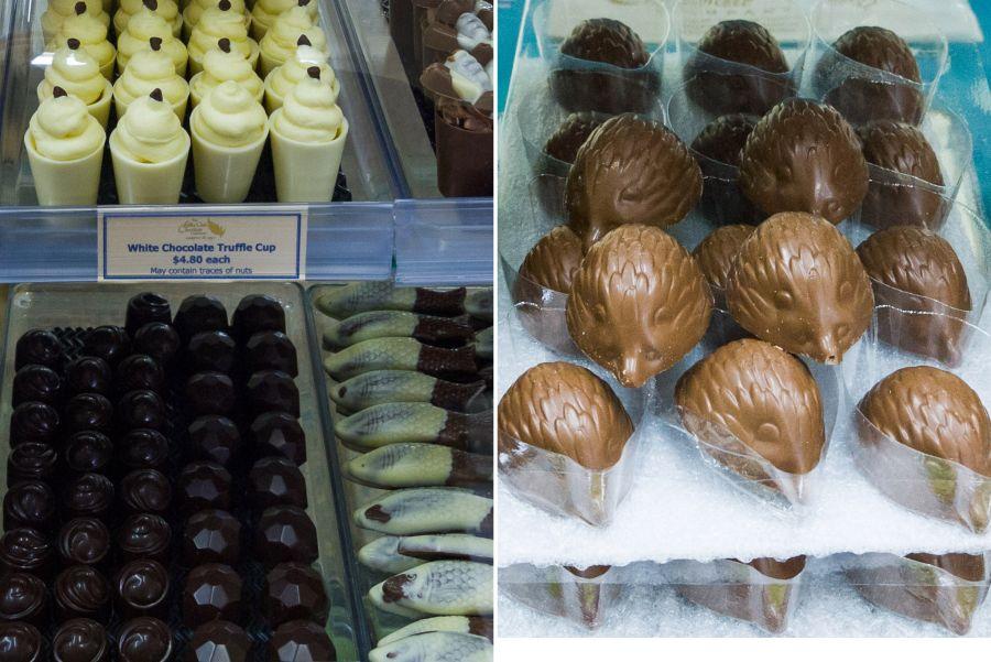 Truffles at Silky Oak Chocolate