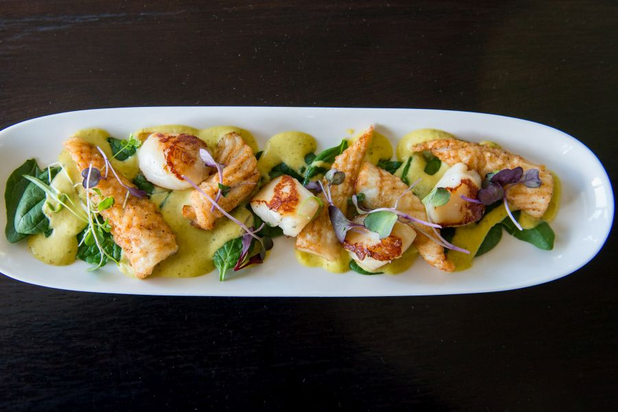 Chilli spiced squid and Nelson scallops with mango and coriander dressing and baby spinach (NZ$18)