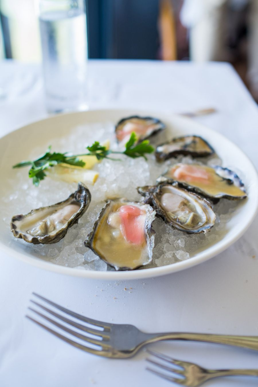 South Australian oysters - natural with fresh lemon (AU$3 each), miso and ginger (AU$4 each)