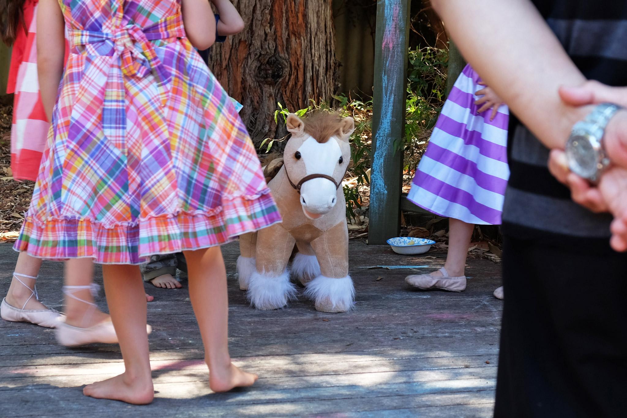 It's a pony!