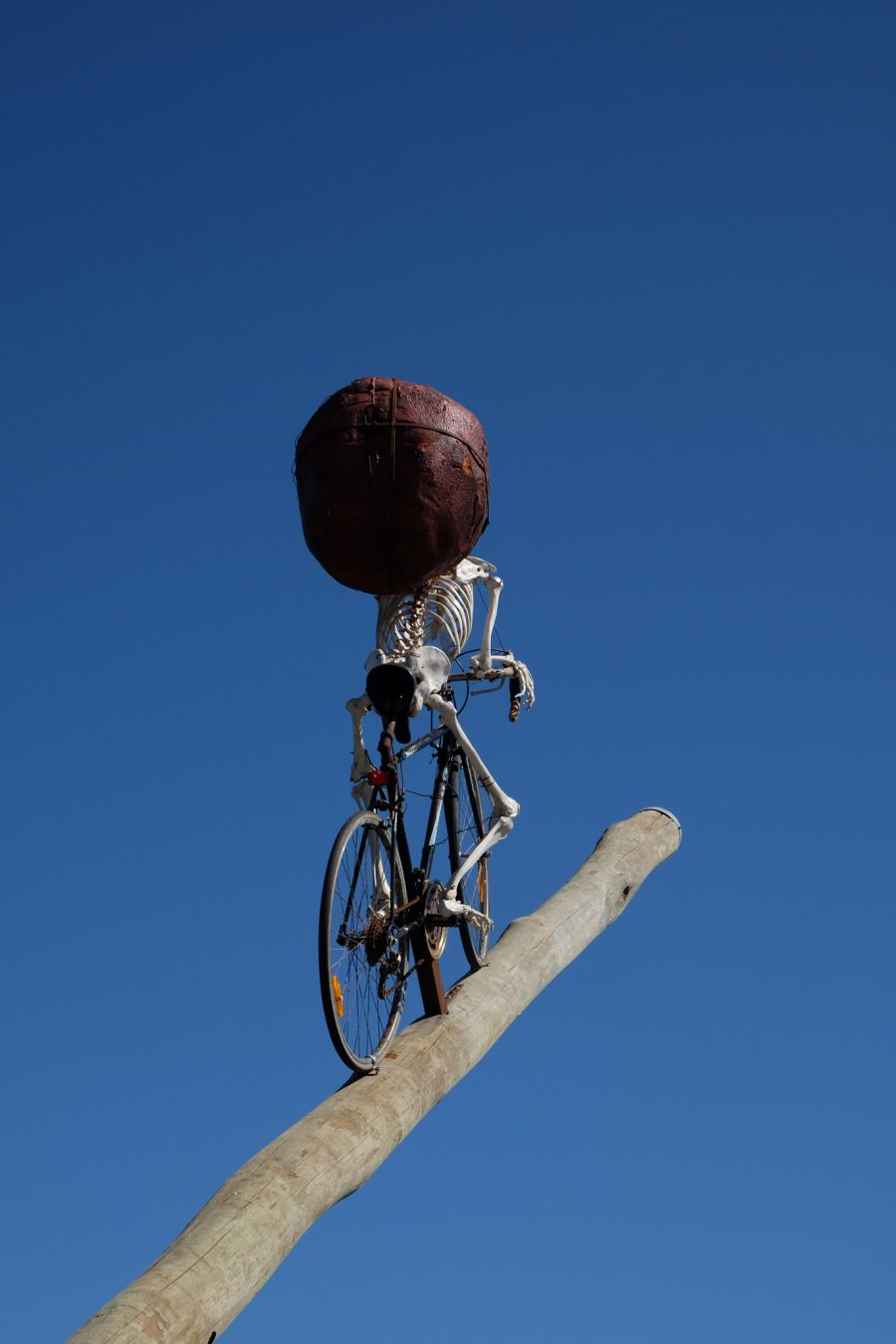 There's many a slip 'twixt the cup and the lip by Ken Unsworth. Timber, bicycle, plastic skeleton, foam, steel, rope