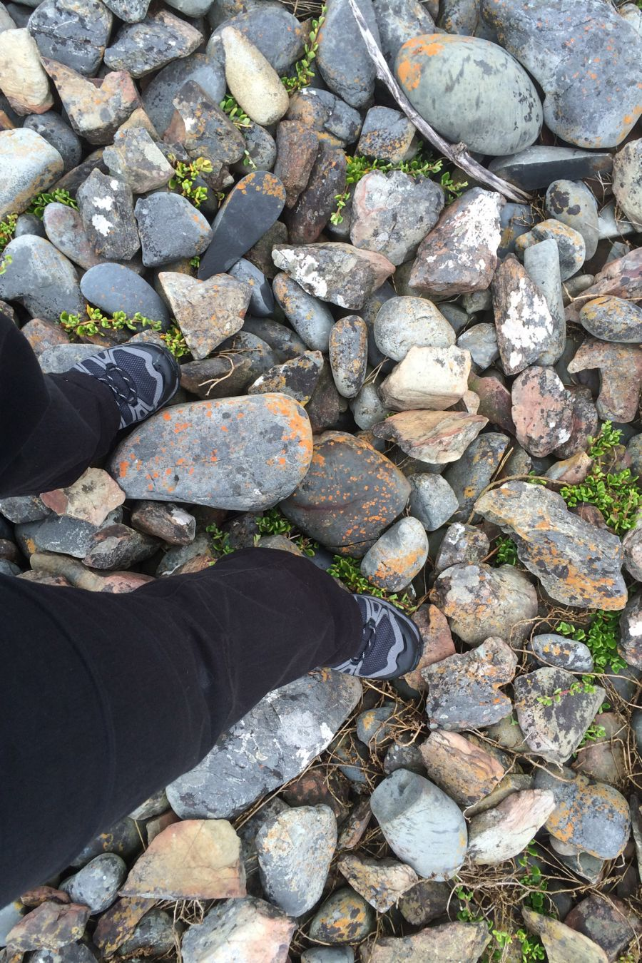 My hiking boots gave me confidence to walk on uneven ground