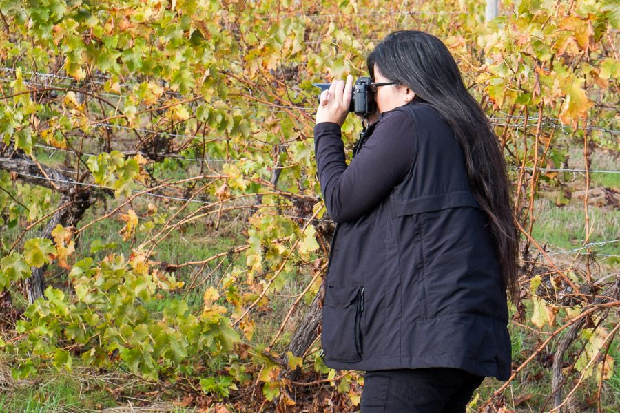 Jac took this photo of me taking photos by the vines. I'm wearing a Scottevest QUEST vest, which I road-tested on this trip and will be reviewing on the blog soon.