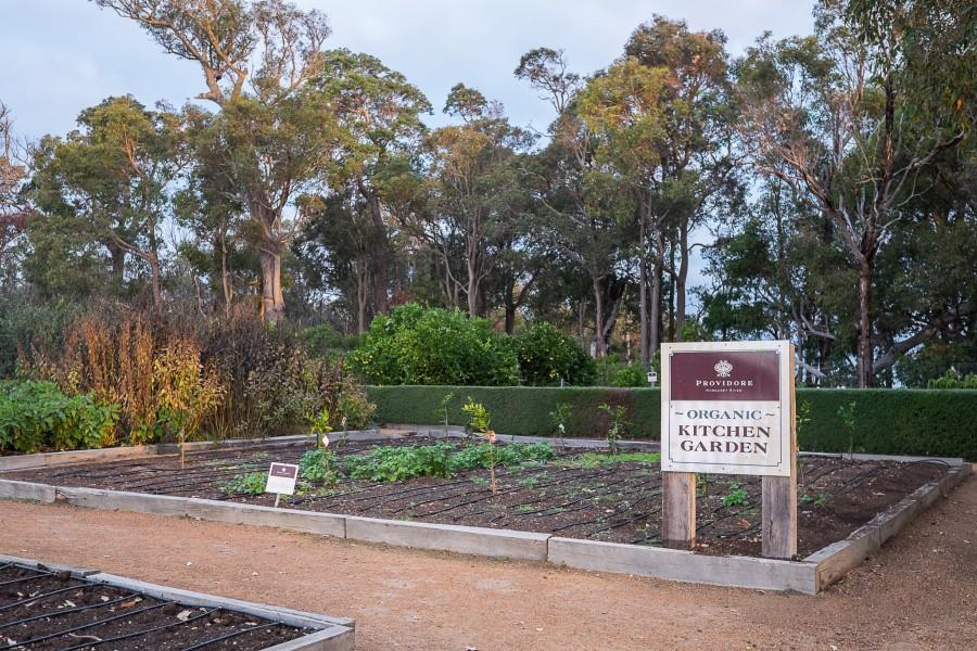 Providore organic kitchen garden