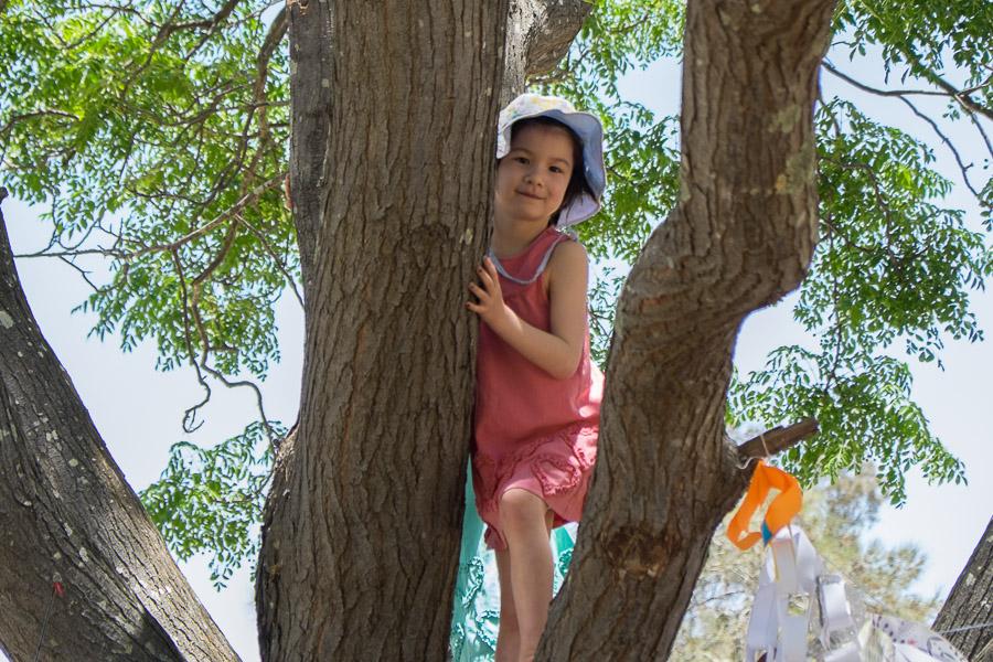Zoe on the climbing tree