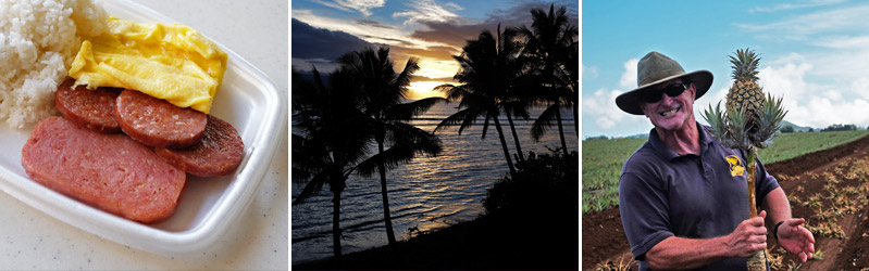 Hawaii-travel