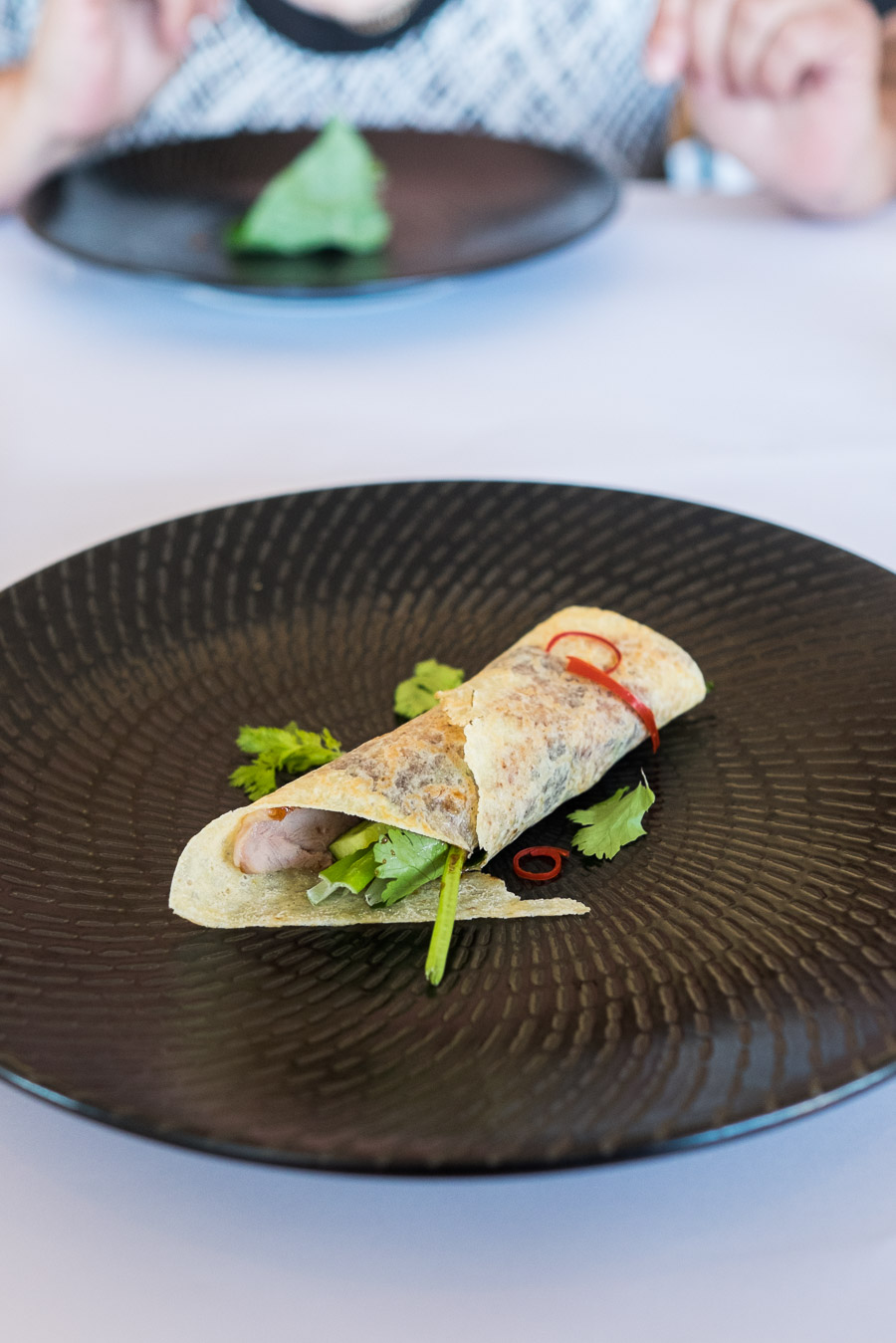 Duck pancake with spring onion, cucumber, coriander and hoisin