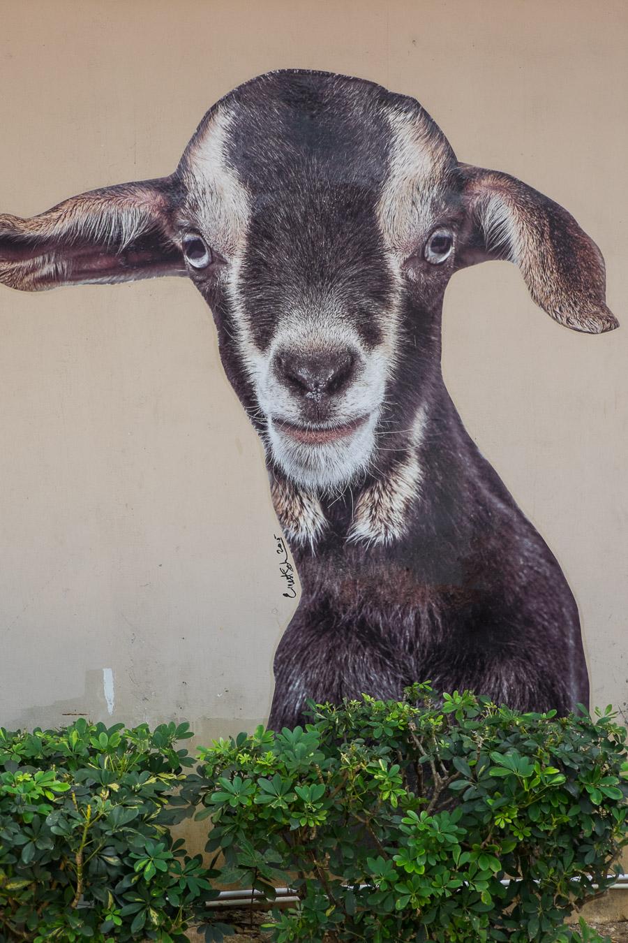 Goat mural